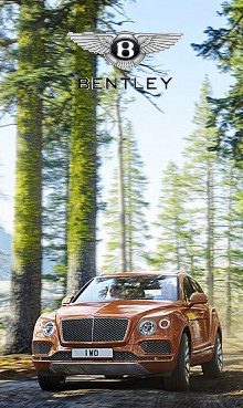 220x369-rightside-inside-bentley